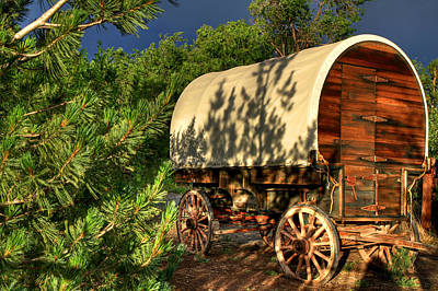 Sheep Herder's Wagon Print by Donna Kennedy