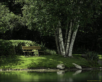 North America Photograph - Shelby Township's Heritage Garden Park Bench by LeeAnn McLaneGoetz McLaneGoetzStudioLLCcom
