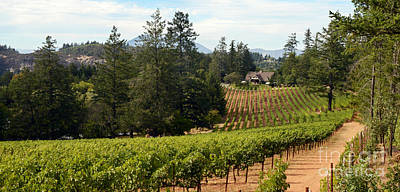 Wine Barrel Mixed Media - Sherwin Family Vineyards by Jon Neidert