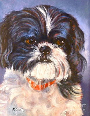 Topknot Painting - Shih Tzu Rescued by Susan A Becker