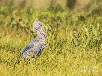 Stork Digital Art - Shoebill Balaeniceps Rex Uganda Africa by Liz Leyden