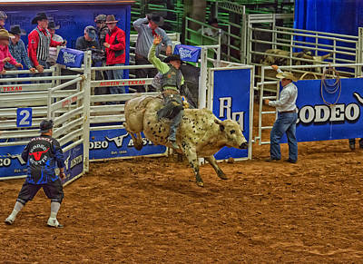 Of Rodeo Bucking Bulls Photograph - Shooting For 8 Seconds by Mountain Dreams