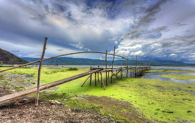 Shore Vegetation Original by Mario Legaspi