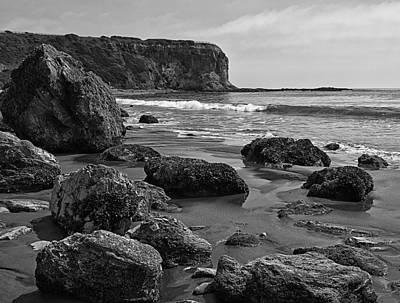 Shoreline Near Abalone Cove Print by Ron Regalado