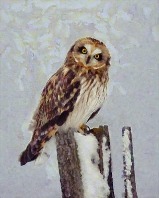 Post Mixed Media - Short-eared Owl   by Mark Kiver
