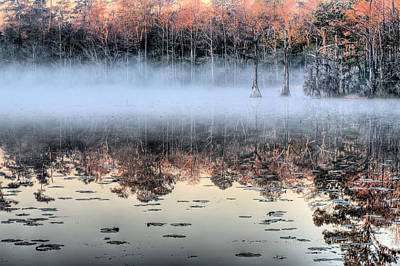 Cypress Swamp Photograph - Shrouded  by JC Findley