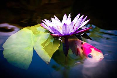 Koi Photograph - Shubunkin Goldfish With Waterlily by Priya Ghose