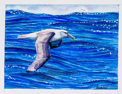 Albatross Painting - Shy Albatross by Dave Whited