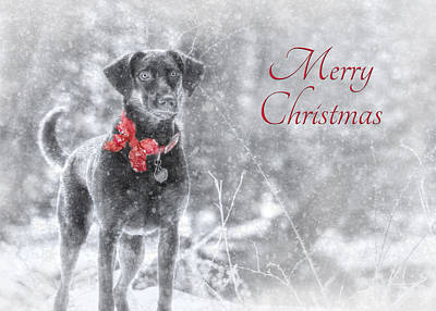 Chocolate Labrador Retriever Digital Art - Sienna - Merry Christmas by Lori Deiter