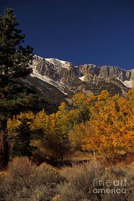 Sierra Nevadas In Autumn Print by Ron Sanford