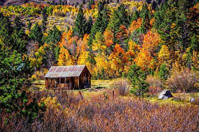 Photograph - Sierra Solitude 2 by Scott McGuire