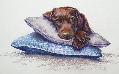 Dog Painting - Siesta by Cynthia House
