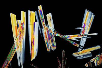 Sildenafil Citrate Drug Print by Antonio Romero