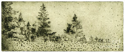 Germ Drawing - Silence - The North - Landscape - Trees  - Forest - Dots - Fall - Fine Art Print - Stock Image by Urft Valley Art