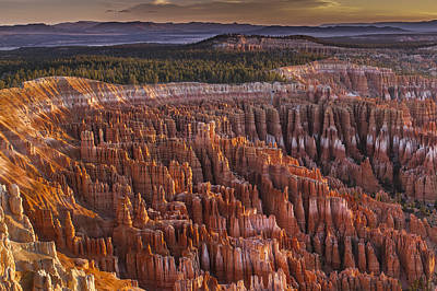 Silent City - Bryce Canyon Print by Eduard Moldoveanu