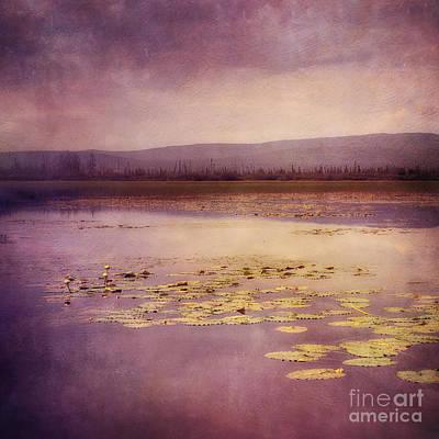 Canada Photograph - Silent Water  by Priska Wettstein