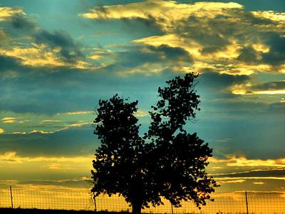 Colors Of Nature Photograph - Silhouette by Dan Sproul