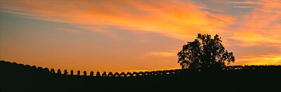 Winemaking Photograph - Silhouette Of Vineyard At Sunset, Paso by Panoramic Images