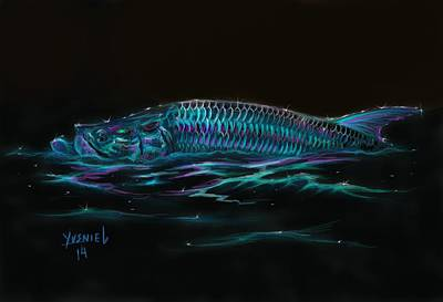 Trout Mixed Media - Silver Flash by Yusniel Santos