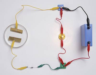 Simple Electronic Circuit Detects Water Print by Dorling Kindersley/uig