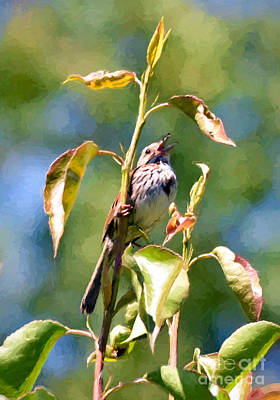 Sparrow Photograph - Sing Your Heart Out by Kerri Farley
