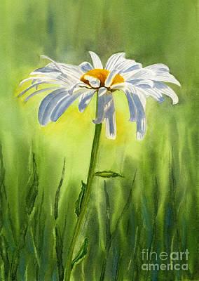 Single White Daisy  Original by Sharon Freeman