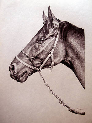 Portrait Drawing - Sir Alfred 2 by Patricia Howitt