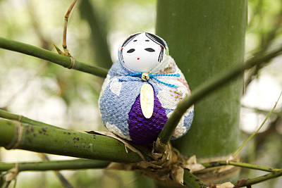 Doll Photograph - Sitting In Bamboo - Blue by William Patrick