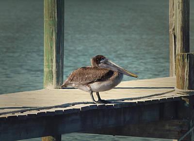 Sitting On The Dock Of The Bay Print by Kim Hojnacki