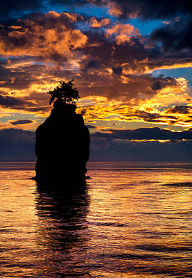 Fir Photograph - Siwash Rock Silhouette by Alexis Birkill