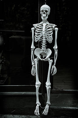Skull Photograph - Skeleton New York City by Garry Gay