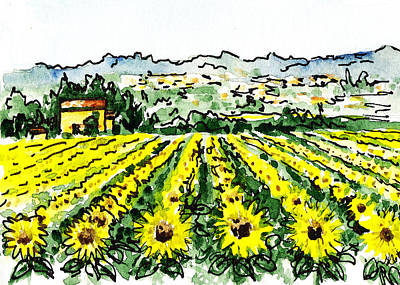 Old Age Painting - Sketching Italy Sunflowers Of Tuscany by Irina Sztukowski