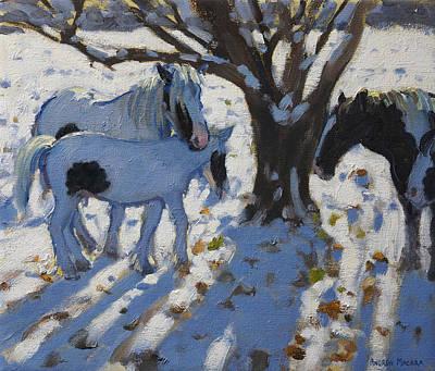 Skewbald Ponies In Winter Print by Andrew Macara