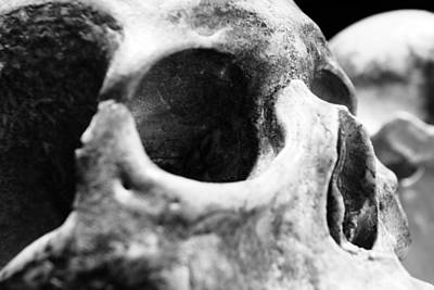 Disney Photograph - Skull - 2 by Nicholas Evans