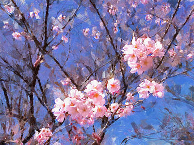 Sky Blue And Sakura Print by Bernie  Lee
