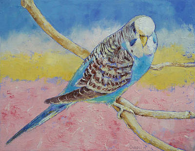 Impasto Oil Painting - Sky Blue Budgie by Michael Creese