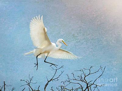 Egret Digital Art - Sky Dancing by Betty LaRue