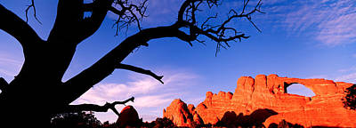 Bare Trees Photograph - Skyline Arch, Arches National Park by Panoramic Images