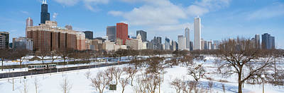 Bare Trees Photograph - Skyscrapers In A City, Grant Park by Panoramic Images