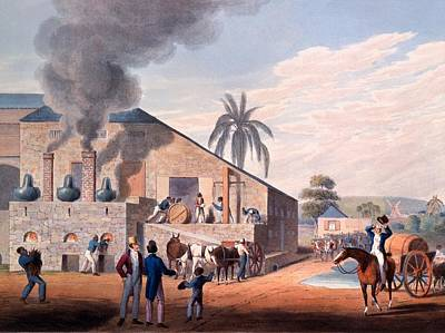 Factory Drawing - Slaves Set To Work Producing Rum by William Clark