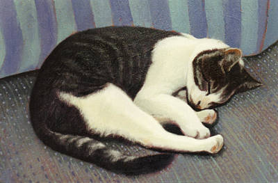 Sleeping Cat Print by Blue Sky