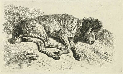 Sleeping Dog, Johannes Mock Print by Johannes Mock