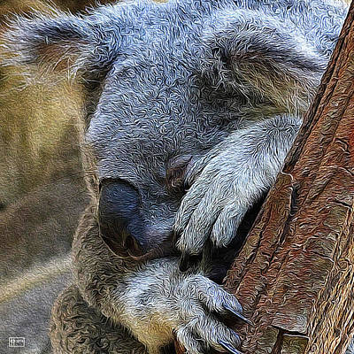 Koala Art Digital Art - Sleeping Koala by Jim Pavelle