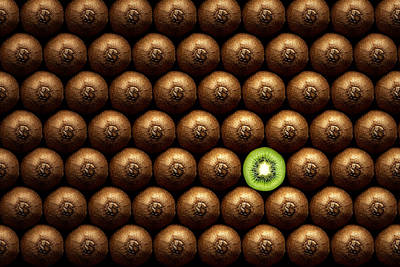 Different Photograph - Sliced Kiwi Between Group by Johan Swanepoel