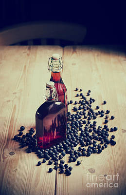 Sloe Gin Print by Tim Gainey