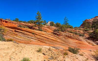 Sandstone Photograph - Slopes Of Layers by John M Bailey