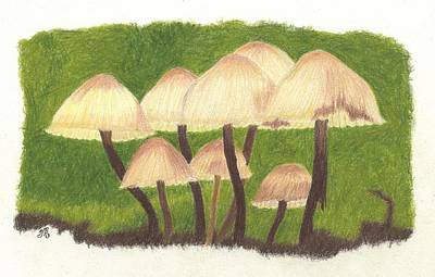 Fungi Drawing - Small World by Sheila Byers