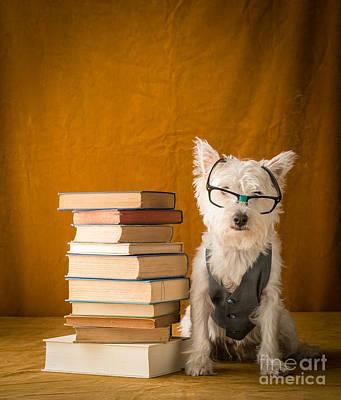 Smart Photograph - Smartie by Edward Fielding