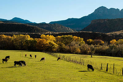 Smithsonian Butte And Two Feathers Ranch Early Fall On The Virgin River Rockville Utah Print by Robert Ford