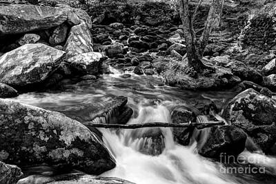 Smoky Mountain Stream 4 Bw Print by Mel Steinhauer